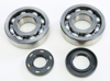 Crankshaft Bearing & Seal Kit - For 87-01 Kawa KX250