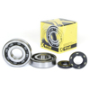 Crankshaft Bearing & Seal Kit - For 03-07 Kawa KX250
